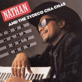 Nathan And The Zydeco Cha-Chas - Slow Horses And Fast Women