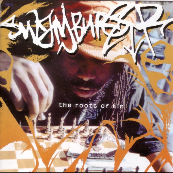 the roots of rap music in america Reggae music gave america the technology to create hip-hop from those foundations, pioneers took the basics and developed new techniques that would advance and distinguish artists from their original roots.