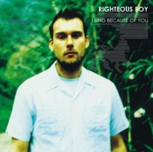 Righteous Boy - View from a Satellite