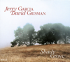 Jerry Garcia & David Grisman - Shady Grove artwork