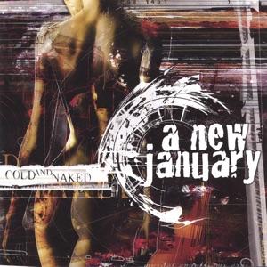 A New January