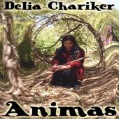 Delia Chariker - Turtle Medicine