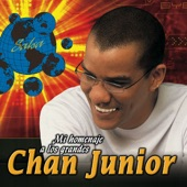 Chan Junior - Sazonando