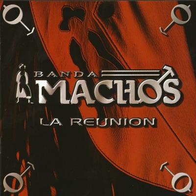 La Reunión - Banda Machos
