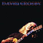 David Crosby - Almost Cut My Hair (Live LP Version)