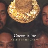 Coconut Joe - What a Wonderful Day!
