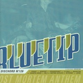 Bluetip - Newport