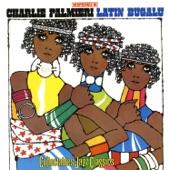 Charlie Palmieri - Clusters