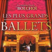 Le Lac Des Cygnes: Acte II Scène 1: Introduction et Danse de la Reine des Cygnes Orchestre National du Théâtre du Bolchoï