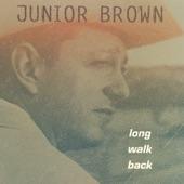 Junior Brown - Peelin' Taters