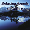 Relaxing Sounds of Nature - John Grout