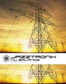 jazztronik - zoology