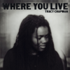 Tracy Chapman - Where You Live Grafik