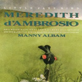 Meredith d'Ambrosio - There'S A Lull In My Life
