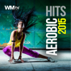 Aerobic Hits 2015 (Non-Stop Mixed Session 135 BPM) - Various Artists