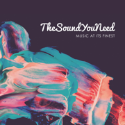 TheSoundYouNeed, Vol. 1 - Various Artists - Various Artists