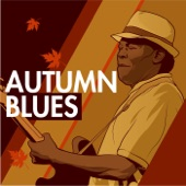 Jimmy Rogers - Blues All Day Long