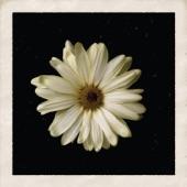Flower - Single