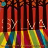 Snarky Puppy & Metropole Orkest - Sylva  artwork