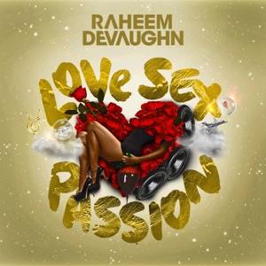 Raheem DeVaughn - When You Love Somebody
