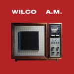 Wilco - I Must Be High