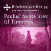 KABB - Paulus' første brev til Timoteus (Bibel2011 - Bibelens skrifter 54 - Det Nye Testamentet) artwork