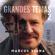 A Miragem - Marcus Viana