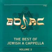 Rak Shalom (University of Maryland) - Tehilah Ledavid (Originally recorded by Baruch Abbitan)