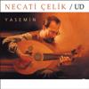 Necati Çelik - Taksim 1 artwork