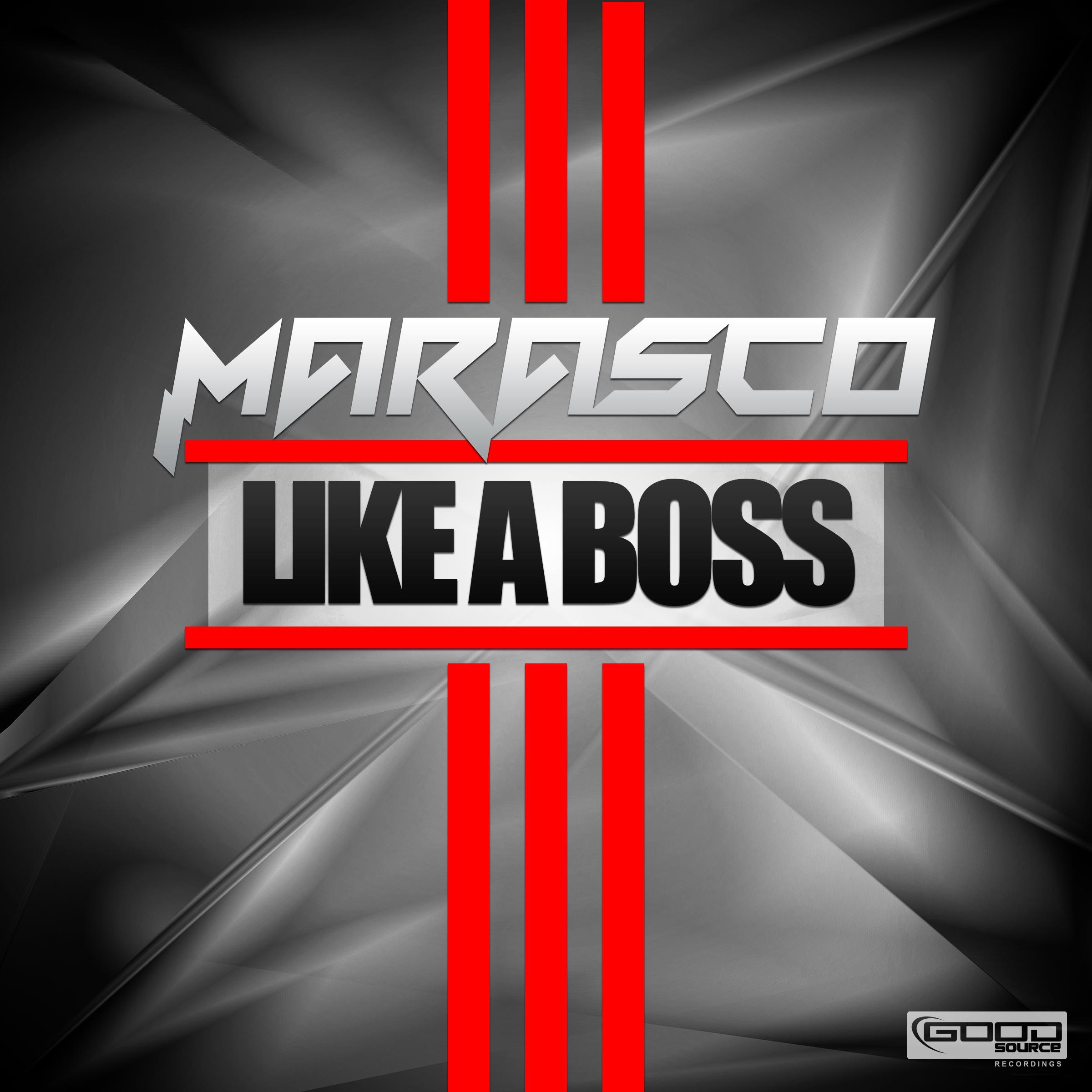 Like a Boss (Radio Edit)