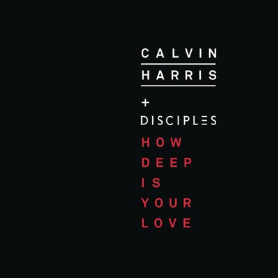 How Deep Is Your Love - Calvin Harris & Disciples song