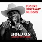 Eugene Hideaway Bridges - Yesteryear Today Tomorrow