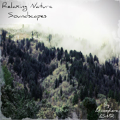 Relaxing Nature Soundscapes