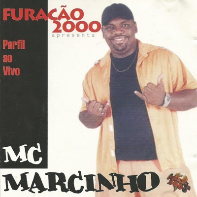 Perfil (Ao Vivo) - Mc Marcinho