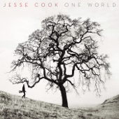 Beneath Your Skin  Jesse Cook - Jesse Cook