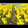睡眠用ディズニー・オルゴール ベストセレクション - 浜崎 vs 浜崎