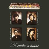 No Vuelvo a Amar (feat. Yuri Ortuño León, Rafael Arias Paz, Orlando Jiménez & Raúl Muriel) [Bolivia y Su Folklore]