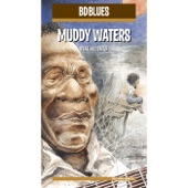 Muddy Waters - She's All Right