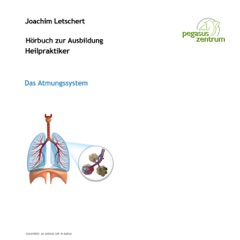 Hörbuch zur Ausbildung für Heilpraktiker: Das Atmungssystem