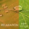 Relaxation 101 - Tibetan Chakra Meditation Music 4 Massage, Reiki & Deep Sleep Songs, Relaxing Nature Sounds - Spa Music Relaxation Meditation