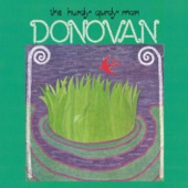 Donovan - The River Song