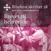 KABB - Brevet til hebreerne (Bibel2011 - Bibelens skrifter 58 - Det Nye Testamentet) artwork