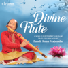 Divine Flute  A Soulful Interpretation of Timeless Bhajans songs