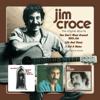 Jim Croce - Time In a Bottle kunstwerk