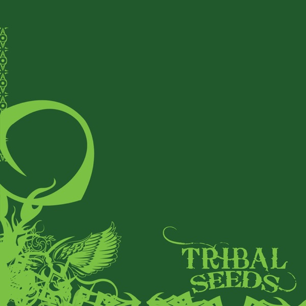 Island Girl - Tribal Seeds song image
