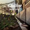 Chillhop Essentials Spring 2017 - Various Artists