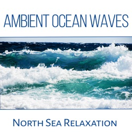 Ambient Ocean Waves: North Sea Relaxation, Yoga Music & Meditation,  Crushing Waves, Seagulls, Nature & Liquid Sounds to Calm Down by Calm Sea