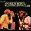 Here At Last… Bee Gees …Live (Live Version), Bee Gees