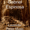 Gabriel Espinosa - Lavender Relax Music  artwork