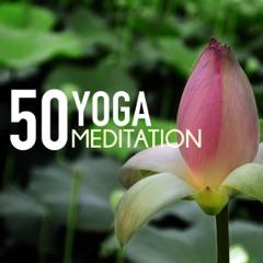 Yoga Meditation 50 - Hatha & Kundalini Sounds of Nature for Relaxing Yoga & Pilates Class